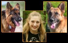 Amy, Donner i Budzik