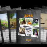 Charytatywny kalendarz 2018