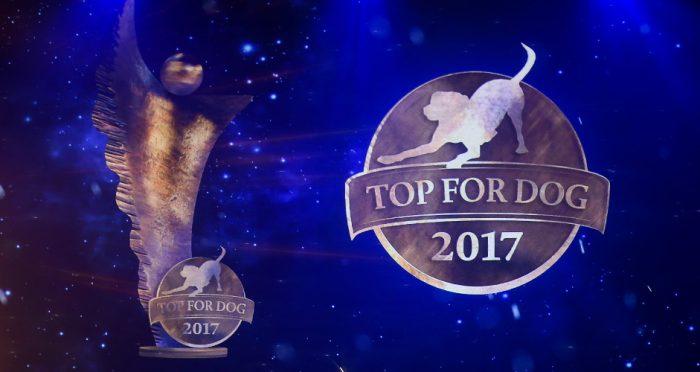 Top For Dog – Oscary w psim świecie