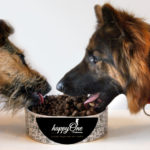 Happy One – karma, która wywoła uśmiech na pysku Twojego psa.