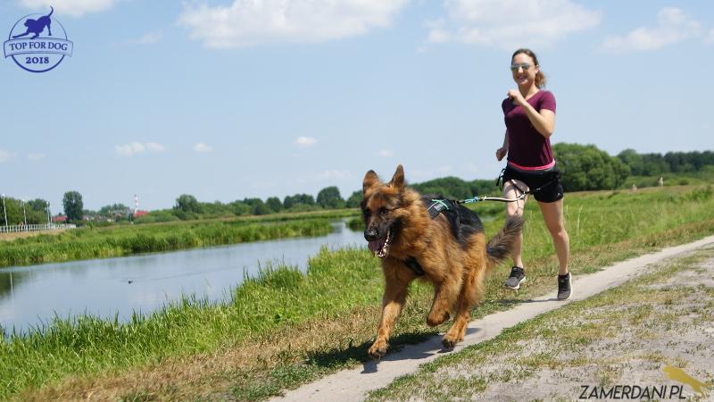 Młoda dziewczyna biegnie polną drogą z psem, który ciągnie ją na pasie. W oddali widać jezioro.