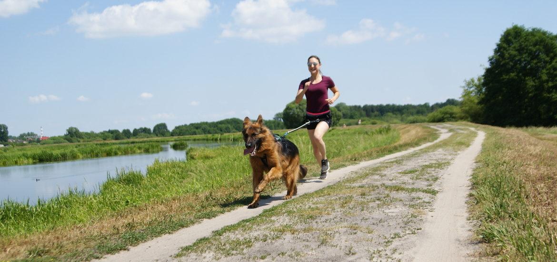TPiękna, słoneczna pogoda. W centralnej części zdjęcia, groblą biegnie młoda dzewczyna, podpięta na pasie do owczarka niemieckiego. Psu zabawnie powiewa język.
