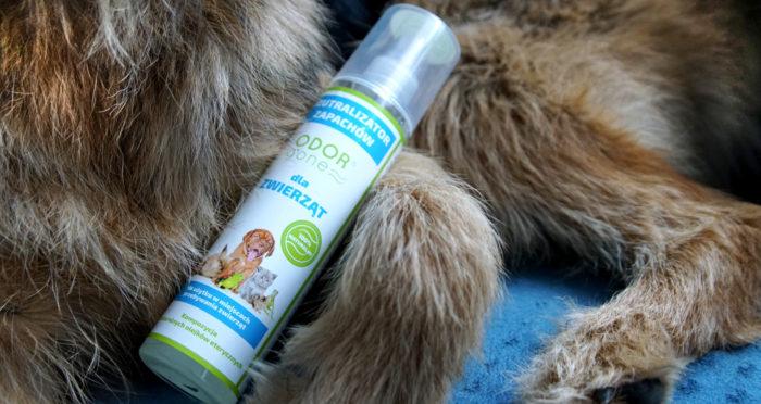 Neutralizator zapachów Odor Gone Animals