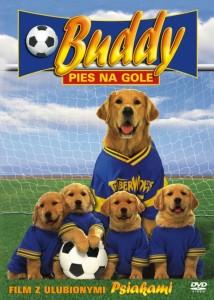 buddy pies na gole