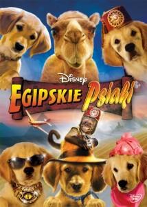 egipskie psiaki