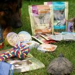 Maxi Zoo – Mikołaki w czerwcu