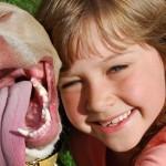 Dzień psiego terapeuty