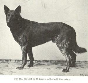 16---beowulf