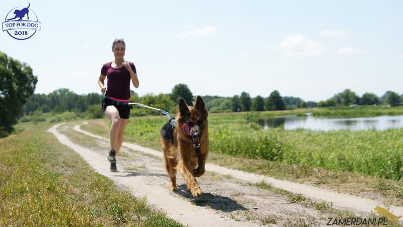 Młoda dziewczyna biegnie polną drogą z psem, który ciągnie ją na pasie