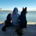 Trzy kroki do udanych wakacji z psem
