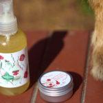 Jak chronić psa przed komarami i muszkami na spacerze