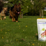 Flexadin Advanced – na pomoc przy spondylozie