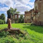 Południowy szlak podlubelskich ruin